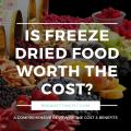 freeze dried food