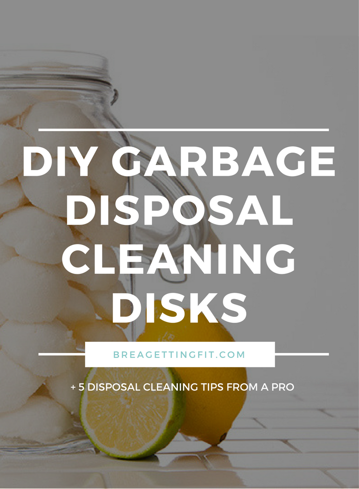 Garbage Disposal Refresher Recipe