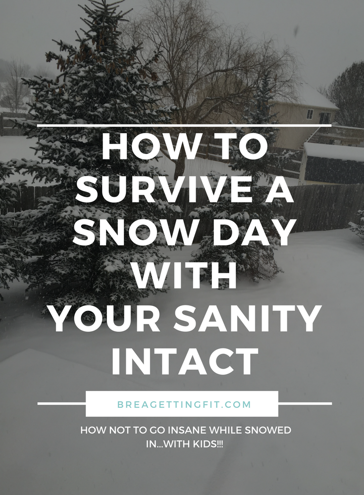 survive a snow day