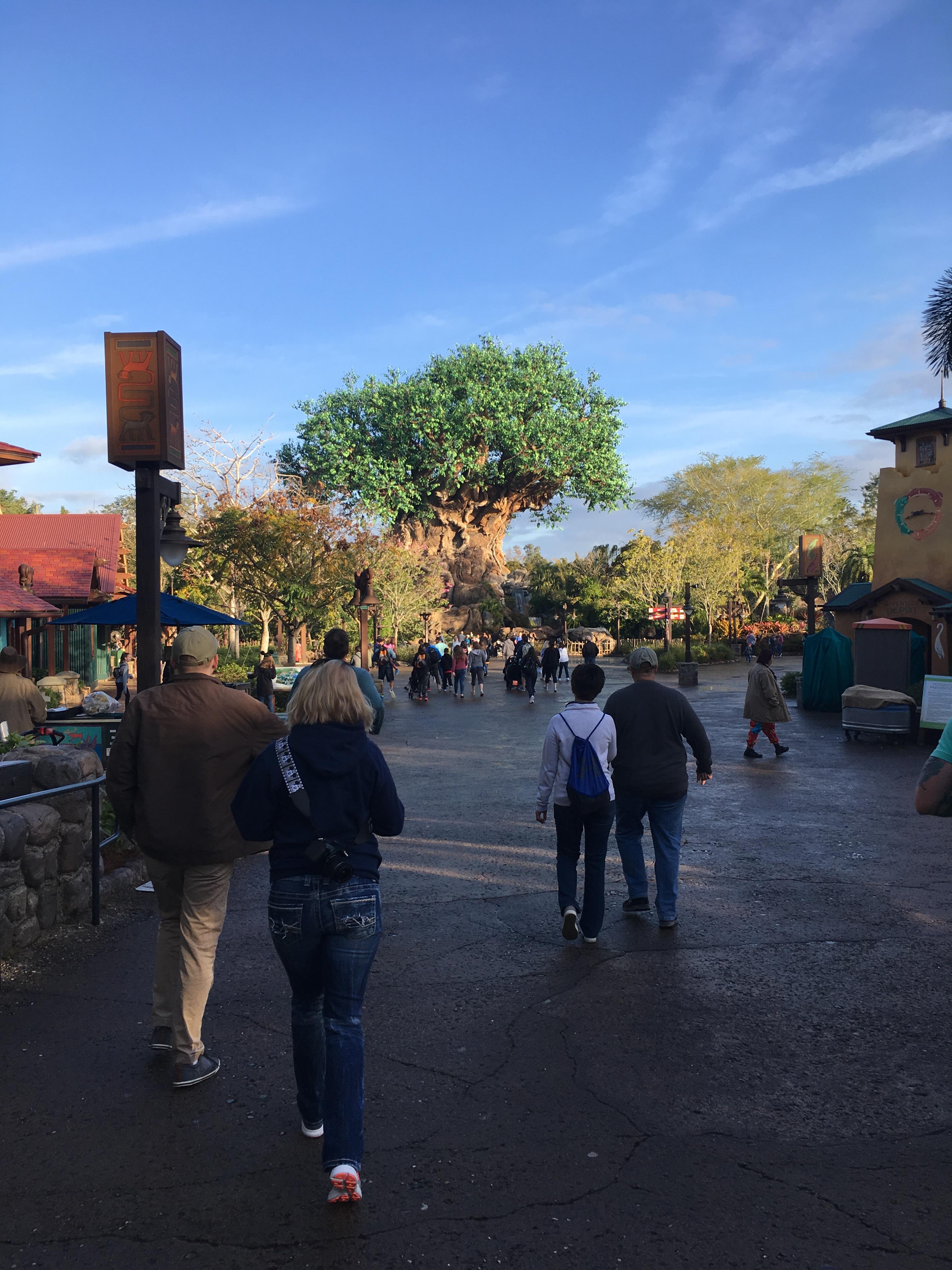 My Mommy Trip to Disney World Parks