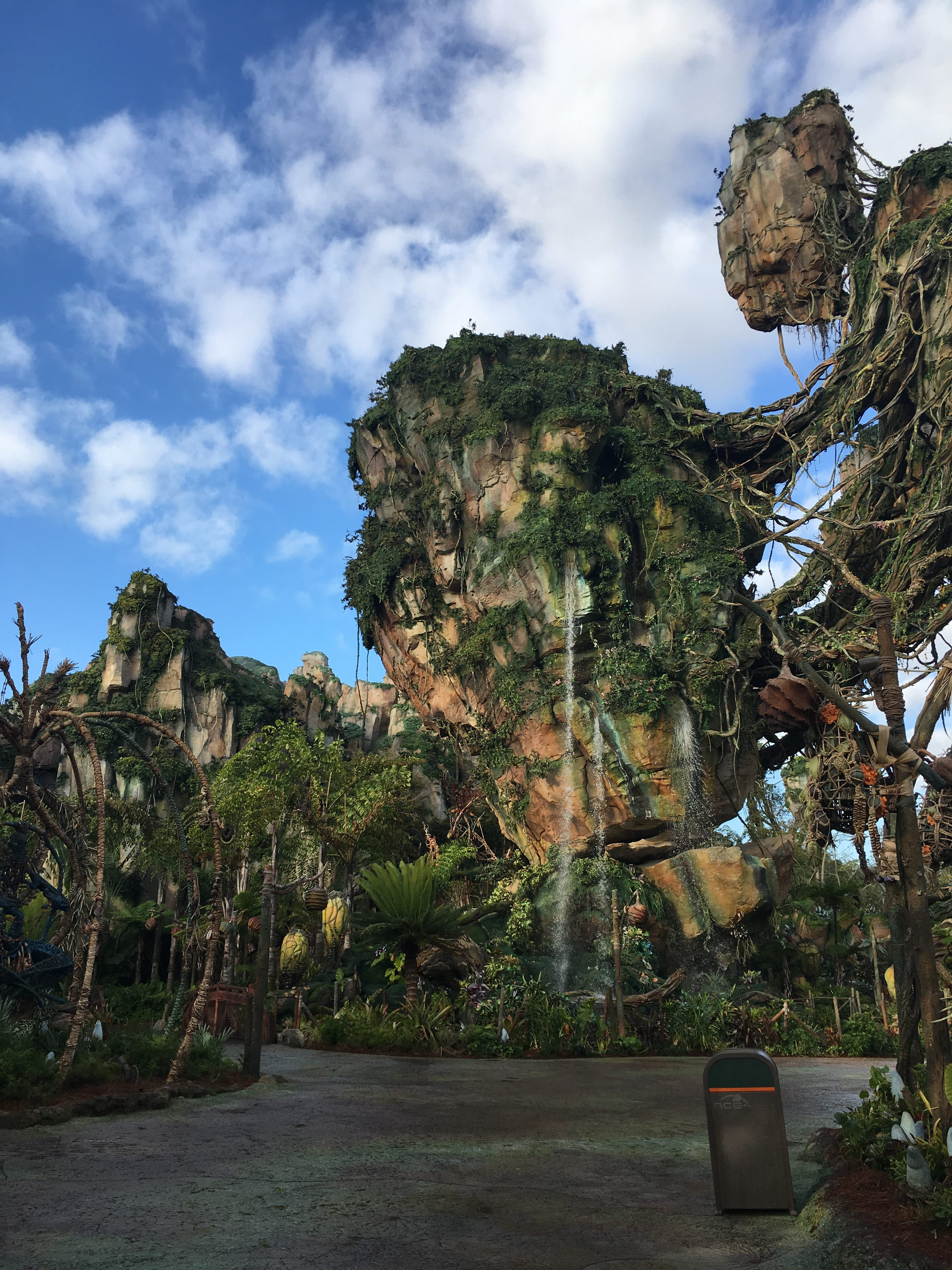 How to eat Paleo at Disney - Tips for your next Disney World vacation!