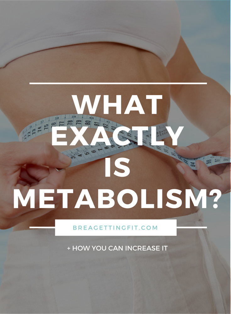 Is Metabolism Important?