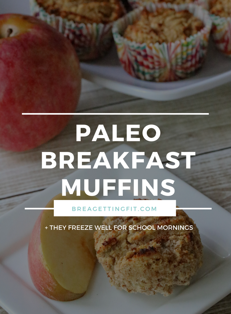 Paleo Coconut Flour Apple Muffins - Paleo Breakfast Muffins