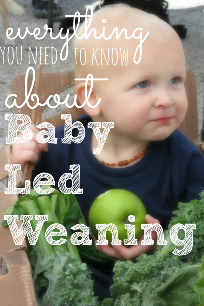 Is your baby ready to start solids? If so, consider baby led weaning. It's safe, fun, and your baby gets to experience real food right away!