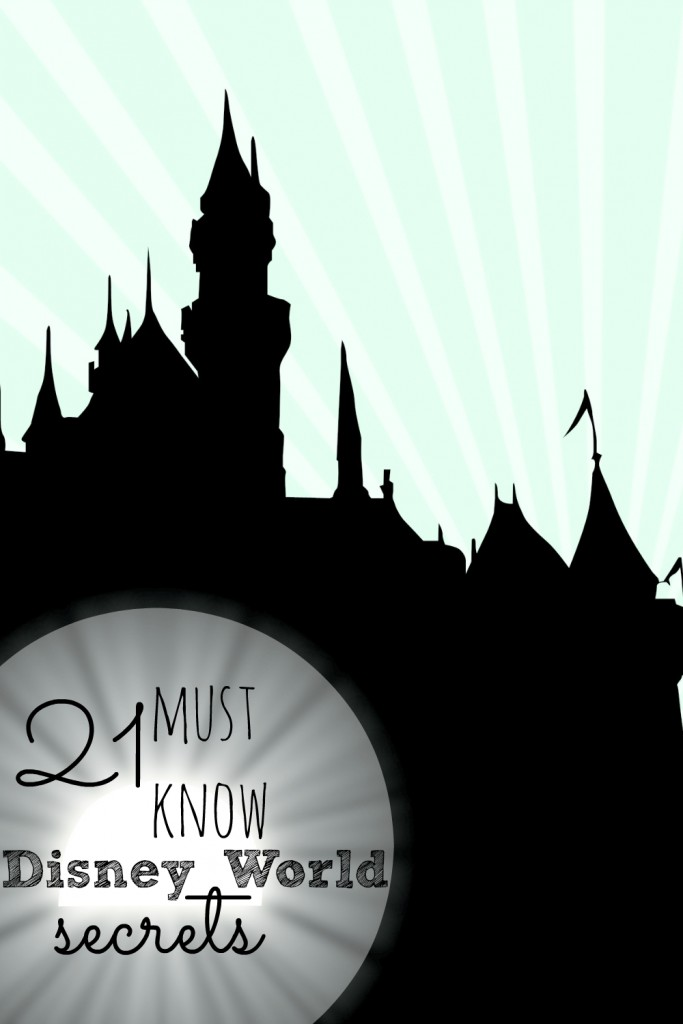 Going to Disney World? Then you need to know these secrets before you go!