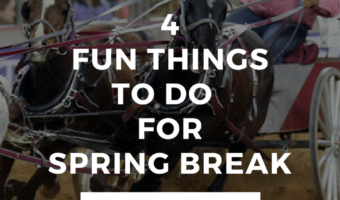 Fun Things To Do Over Spring Break in Houston, Texas